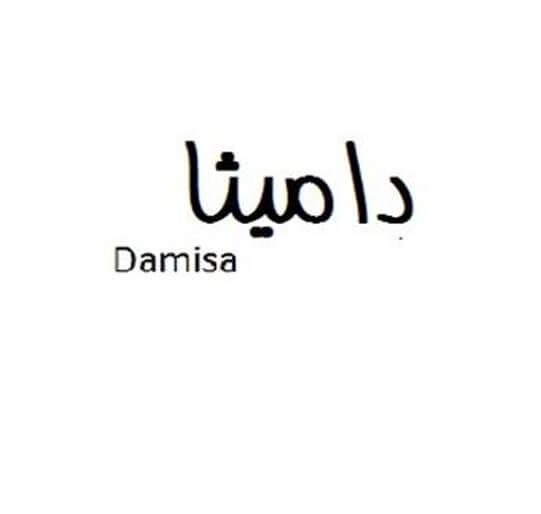 برند آماده پوشاک دامیثا Damisa