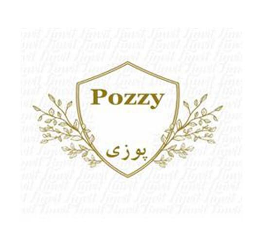 برند فروشی لوازم خانگی پوزی Pozzy
